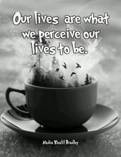 Our lives are what we perceive our lives to be. nadia khalil bradley