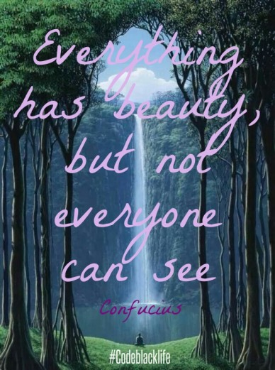 Everything has beauty, but not everyone can see confucius #codeblacklife