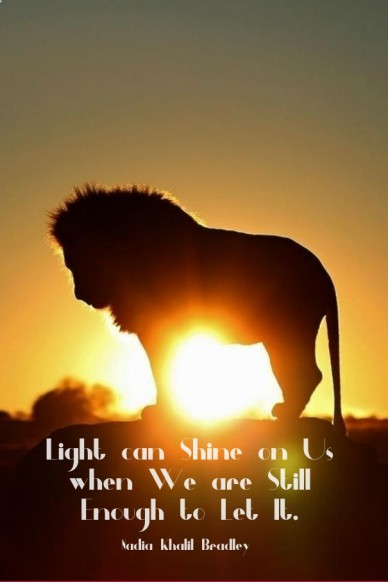 Light can shine on us when we are still enough to let it. nadia khalil bradley