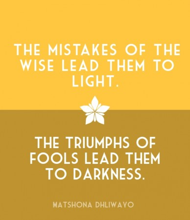 The mistakes of the wise lead them to light. the triumphs of fools lead them to darkness. matshona dhliwayo