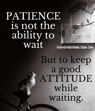 Patience is not the ability to wait but to keep a good attitude while waiting. themotivationalteam.com