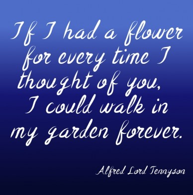 If i had a flower for every time i thought of you, i could walk in my garden forever. alfred lord tennyson