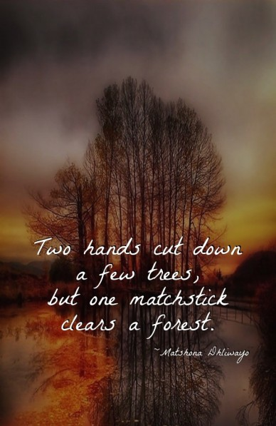 Two hands cut down a few trees, but one matchstick clears a forest. ~matshona dhliwayo
