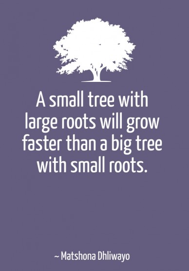 A small tree with large roots will grow faster than a big tree with small roots. ~ matshona dhliwayo