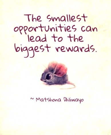 The smallest opportunities can lead to the biggest rewards. ~ matshona dhliwayo
