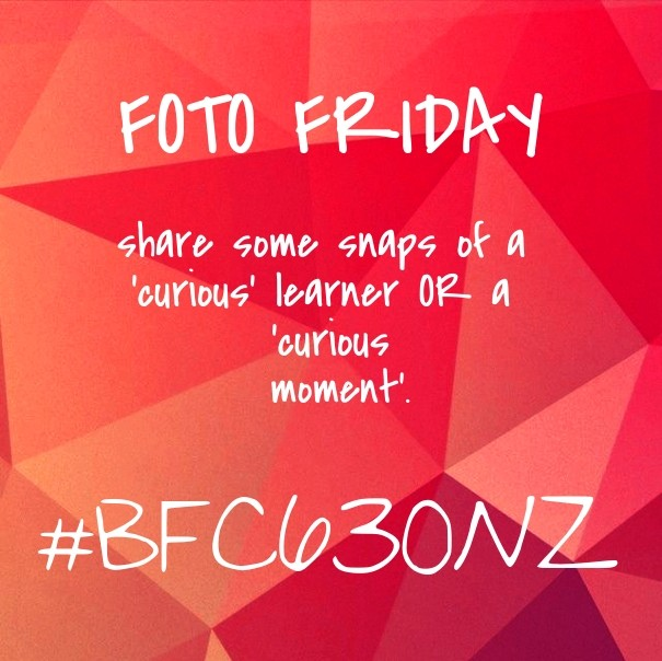 Bfc630nz,                Red,                 Free Image