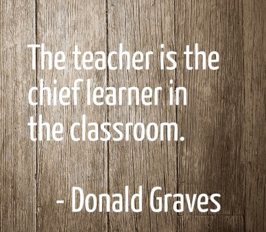 The teacher is the chief learner in the classroom. - donald graves
