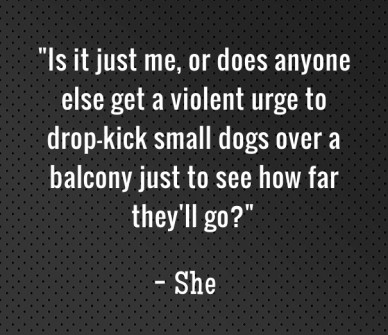 """""""is it just me, or does anyone else get a violent urge to drop-kick small dogs over a balcony just to see how far they'll go?"""" - she"""