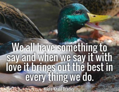 We all have something to say and when we say it with love it brings out the best in every thing we do.nadia khalil bradley