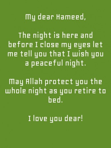 My dear hameed, the night is here and before i close my eyes let me tell you that i wish you a peaceful night. may allah protect you the whole night as you retire to bed. i lo