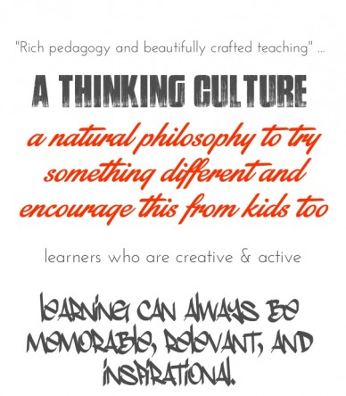 """""""rich pedagogy and beautifully crafted teaching"""" ... a thinking culture a natural philosophy to try something different and encourage this from kids too learners who are creat"""
