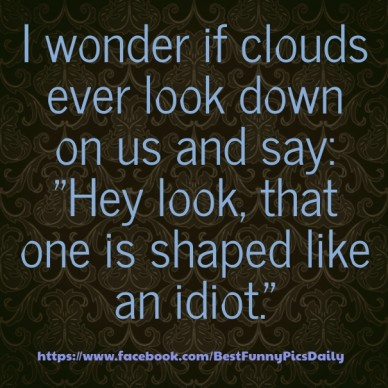 """I wonder if clouds ever look down on us and say: """"hey look, that one is shaped like an idiot."""" https://www.facebook.com/bestfunnypicsdaily"""