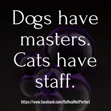 Dogs have masters. cats have staff. https://www.facebook.com/berealnotperfect