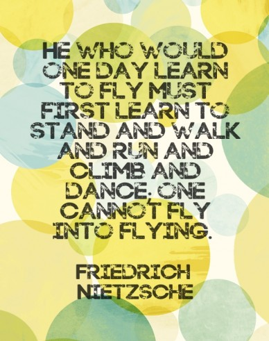He who would one day learn to fly must first learn to stand and walk and run and climb and dance; one cannot fly into flying. friedrich nietzsche