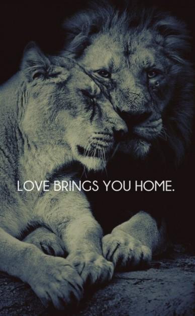Love brings you home.