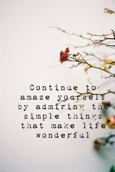 Continue to amaze yourself by admiring the simple things that make life wonderful