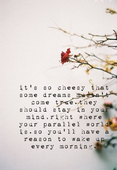 It's so cheesy that some dreams mustn't come true.they should stay in your mind,right where your parallel world is.so you'll have a reason to wake up every morning.