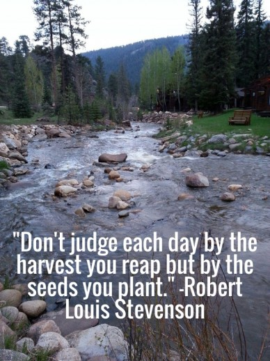 """don't judge each day by the harvest you reap but by the seeds you plant."" -robert louis stevenson"