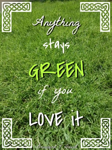 Anything stays green if you love it -brainard t david