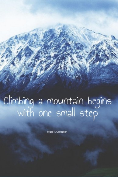 Climbing a mountain begins with one small step brigid p. gallagher