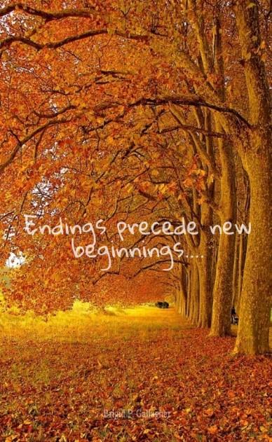Endings precede new beginnings.... brigid p. gallagher