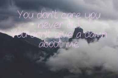 You don't care you never did. you don't give a damn about me