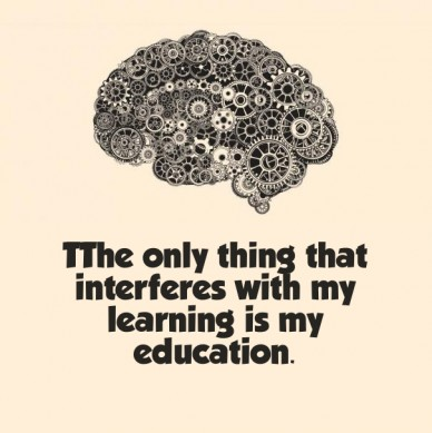 Tthe only thing that interferes with my learning is my education.