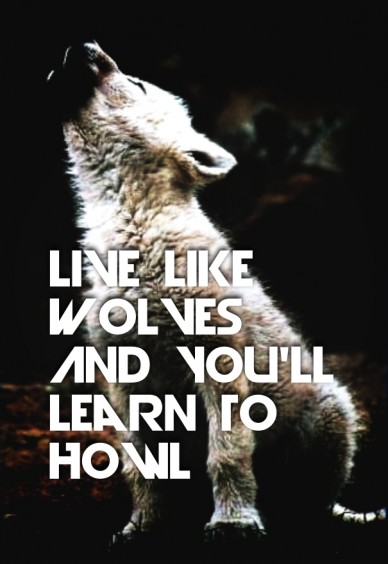 Live like wolves and you'll learn to howl tell something here...