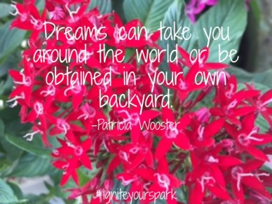 Dreams can take you around the world or be obtained in your own backyard. -patricia wooster #igniteyourspark