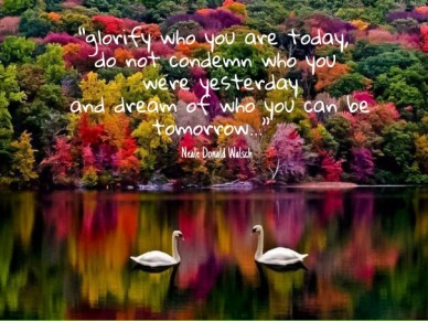 """""""glorify who you are today, do not condemn who you were yesterday and dream of who you can be tomorrow..."""" ― neale donald walsch"""