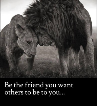 Be the friend you want others to be to you...