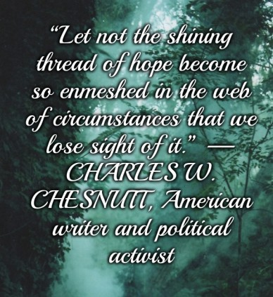 """""""let not the shining thread of hope become so enmeshed in the web of circumstances that we lose sight of it."""" —charles w. chesnutt, american writer and political activist"""
