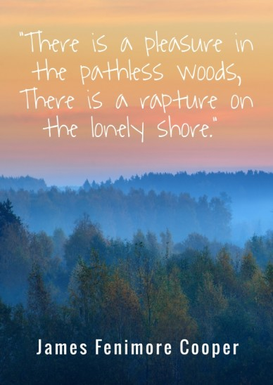 """""""there is a pleasure in the pathless woods, there is a rapture on the lonely shore."""" james fenimore cooper"""