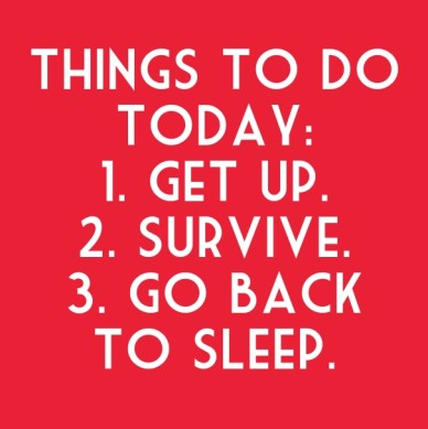 Things to do today: 1. get up.2. survive.3. go back to sleep.