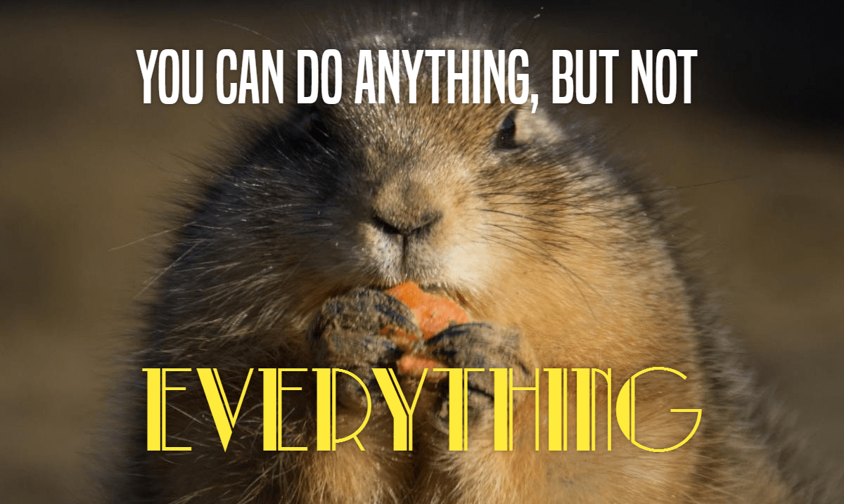 Mammal,                Whiskers,                Fauna,                Squirrel,                Rodent,                Poster,                Text,                Quote,                Simple,                Black,                Yellow,                 Free Image