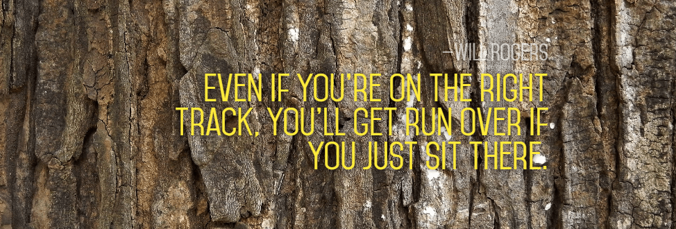 Habitat,                Tree,                Trunk,                Natural,                Environment,                Plant,                Poster,                Text,                Quote,                Simple,                Black,                Yellow,                 Free Image