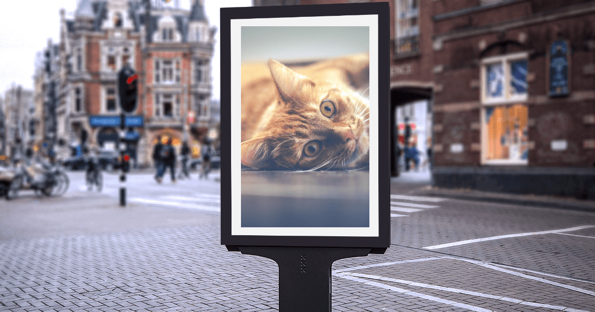 #mockup #inspiration #life #photo Design  Template