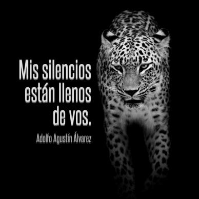 Mis silencios #poster