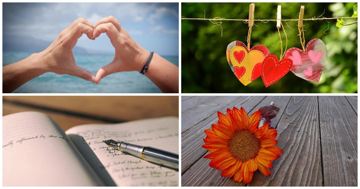 Flower,                Petal,                Organ,                Hand,                Human,                Body,                Collage,                Image,                Photos,                White,                Black,                Red,                 Free Image