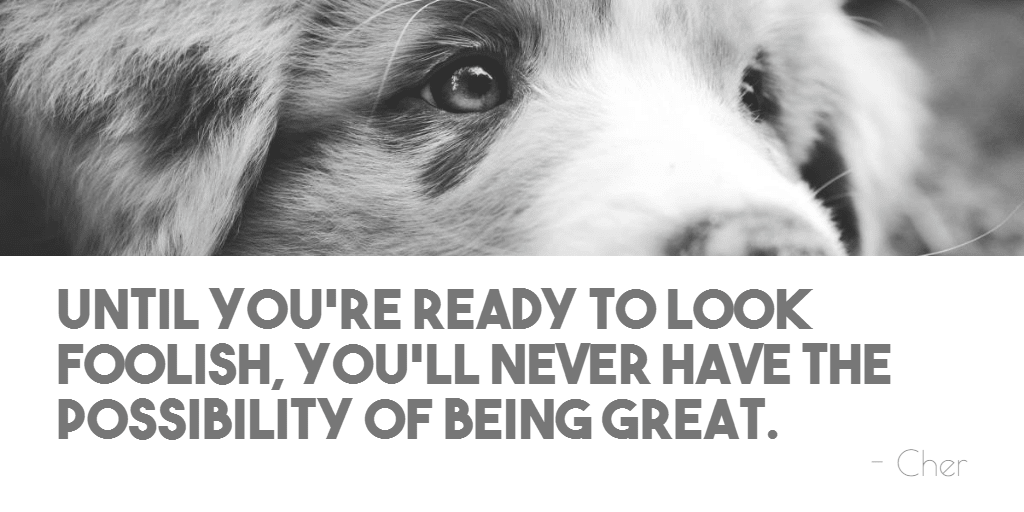 Black,                And,                White,                Dog,                Nose,                Like,                Mammal,                Puppy,                Poster,                Text,                Quote,                Simple,                 Free Image