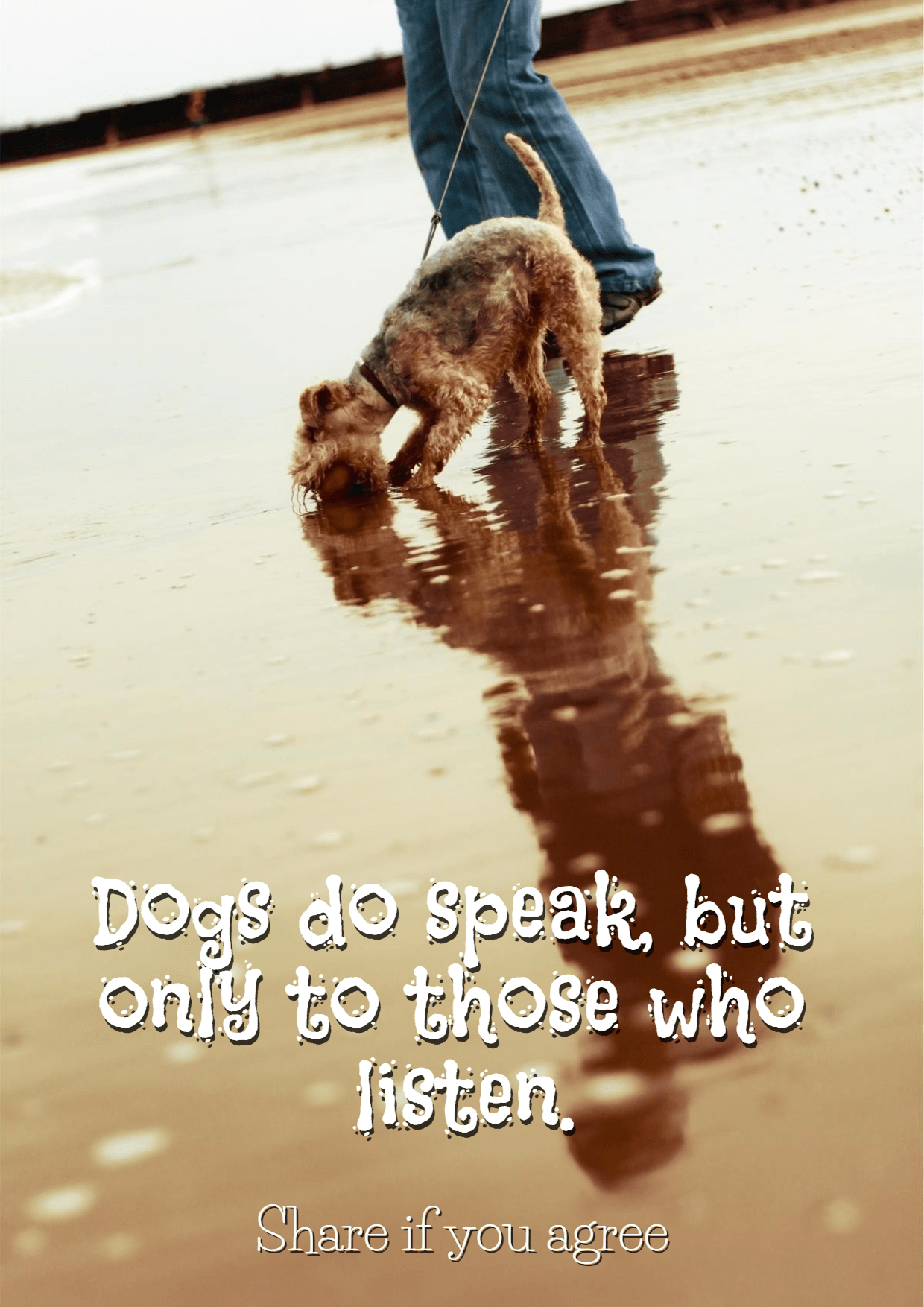 Dogs #poster #quote #funny Design  Template
