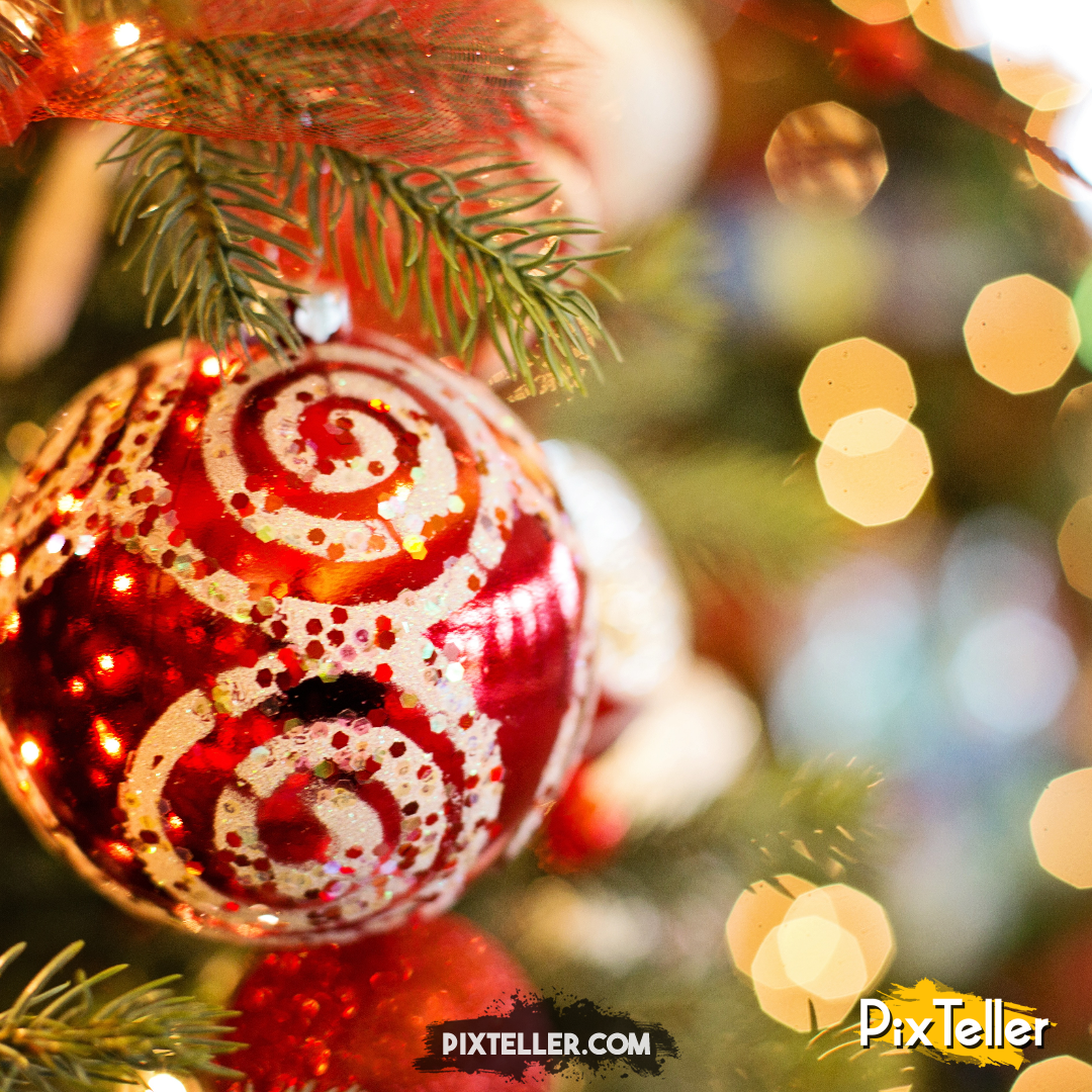 Christmas,                Tree,                Decoration,                Branch,                Image,                White,                Black,                Yellow,                Red,                 Free Image
