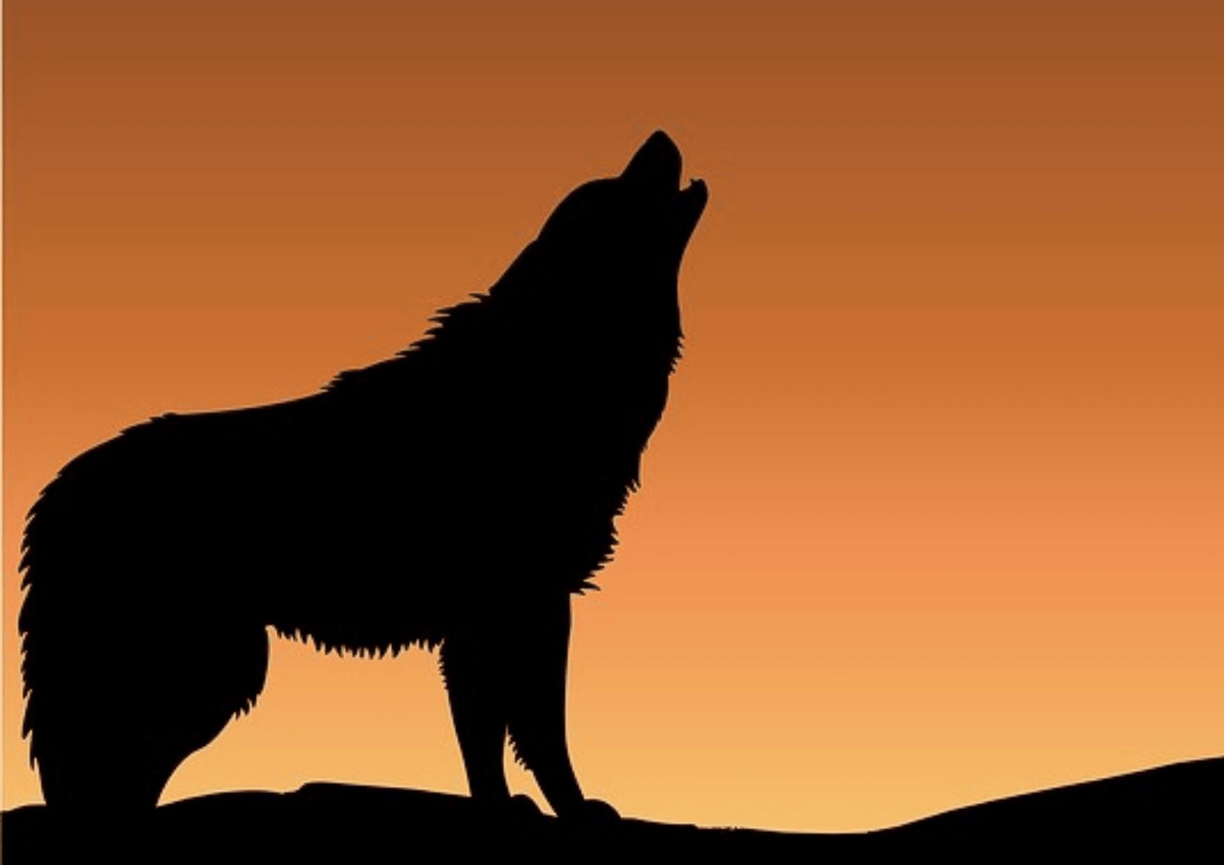 Mammal,                Silhouette,                Dog,                Like,                Illustration,                Black,                Yellow,                Red,                 Free Image