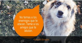 #quotes #wise #workable #autosuperación