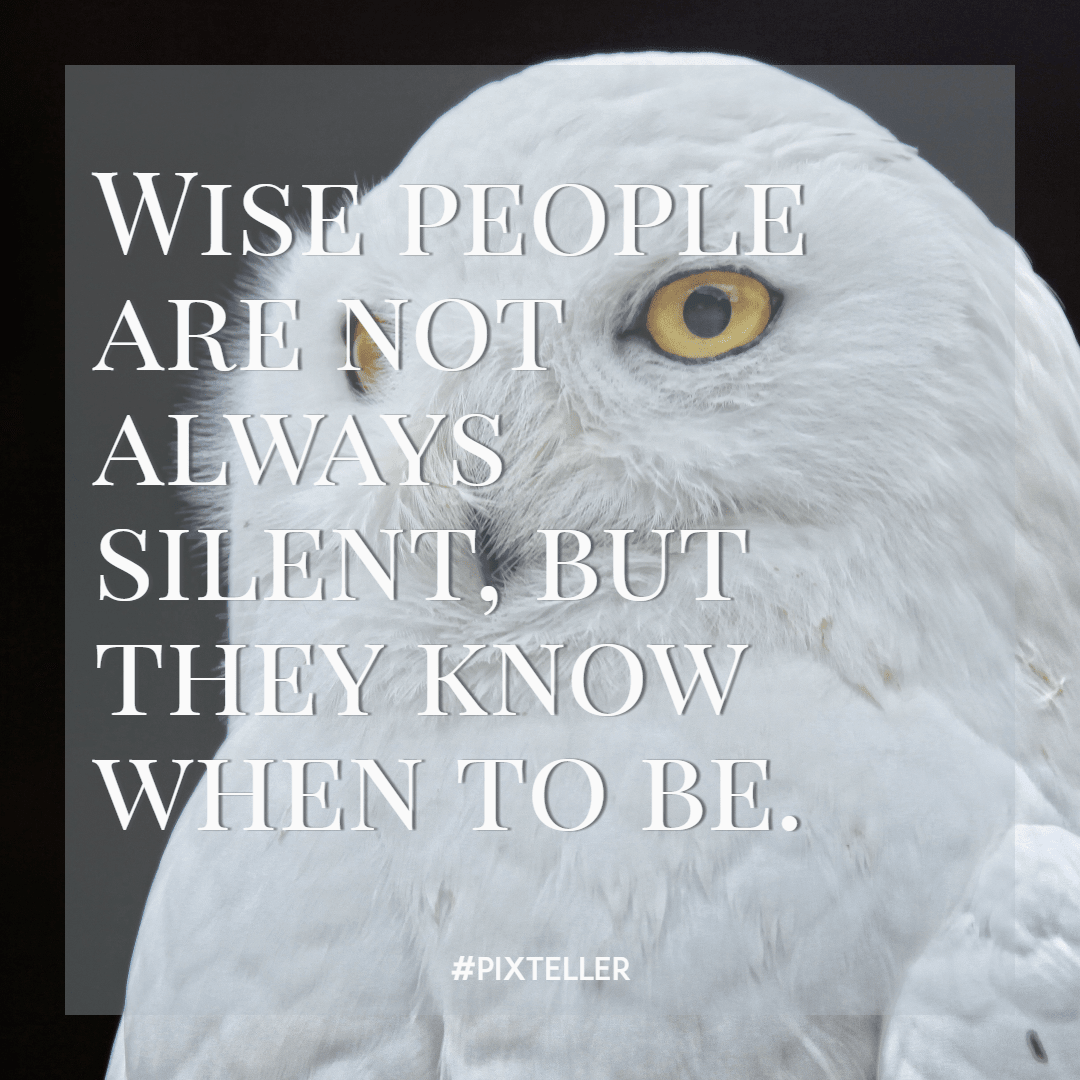 Bird,                Of,                Prey,                Font,                Eagle,                Wing,                Simple,                Poster,                Quote,                White,                Black,                 Free Image