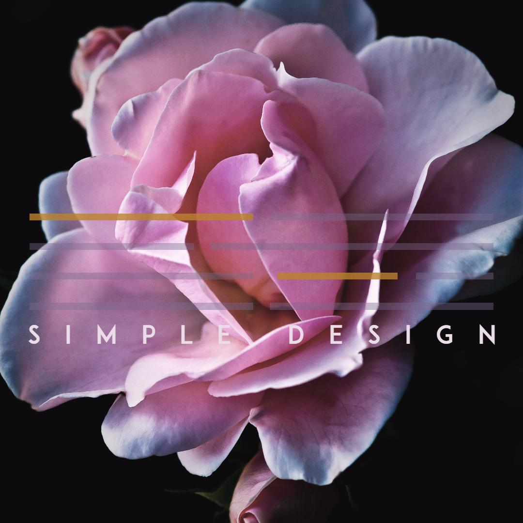 Flower,                Plant,                Pink,                Flora,                Purple,                Simple,                Poster,                White,                Black,                Fuchsia,                 Free Image