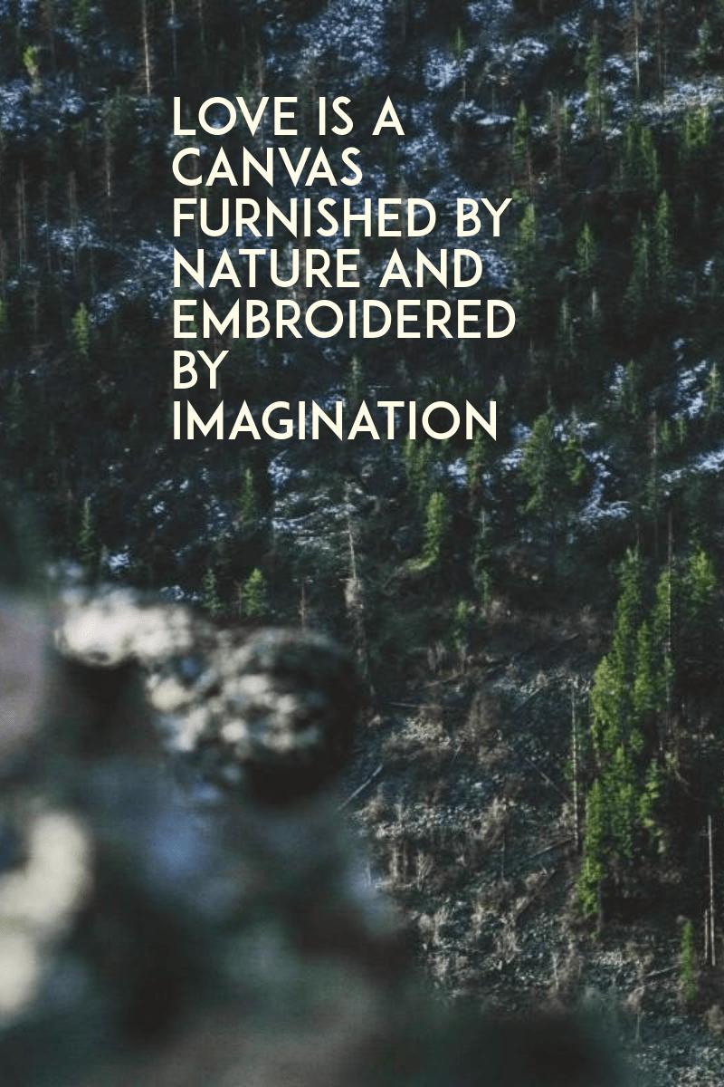 Habitat,                Nature,                Wilderness,                Tree,                Natural,                Environment,                Black,                 Free Image