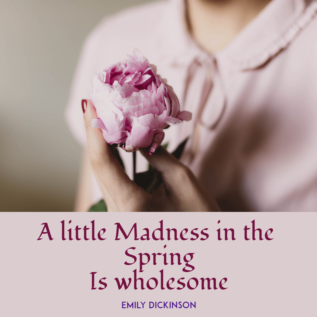 Madness in the spring #spring  Design  Template