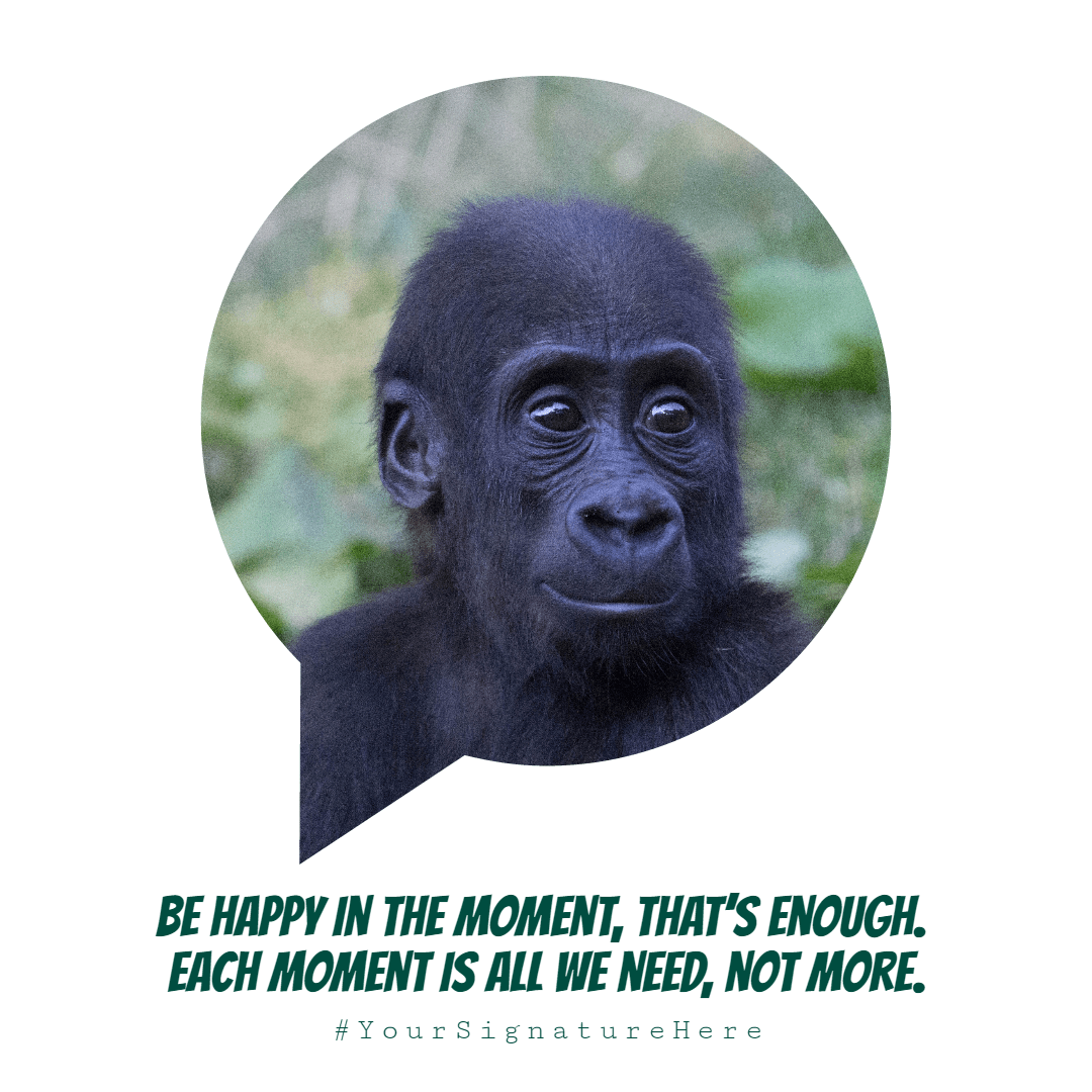 happy, moment #funny #image #poster Design  Template