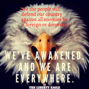 We the people will defend our country against all enemies be it foreign or domestic ~!